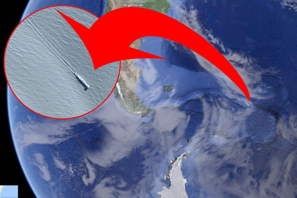 Hobby-Forscher machen nahe der Antarktis unglaubliche Entdeckung