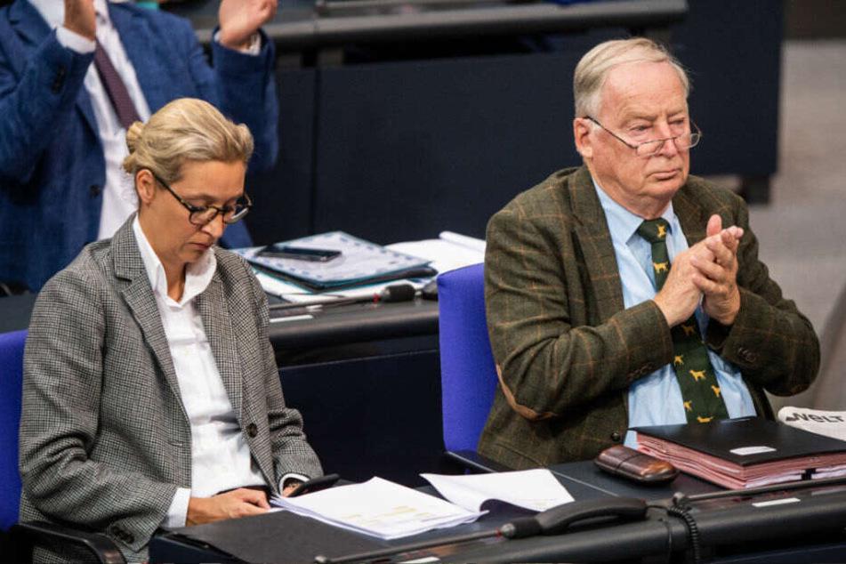 Alice Weidel (l) und Alexander Gauland (r) während einer Rede ihres AfD-Parteikollegen bei der 116. Sitzung des Bundestages.