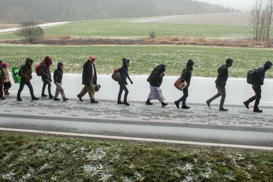 Flüchtlinge gehen an der deutsch-österreichischen Grenze während eines Schneeschauers nach Deutschland. (Archivbild)