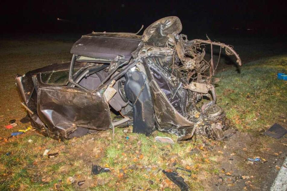 Horror-Crash: Audifahrer schwer verletzt, Hund stirbt