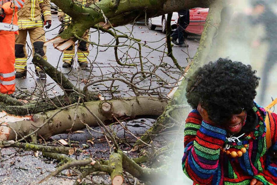 Gewaltige Orkanböen mit bis zu 100 km/h! Sturm verhagelt Sachsen den Rosenmontag