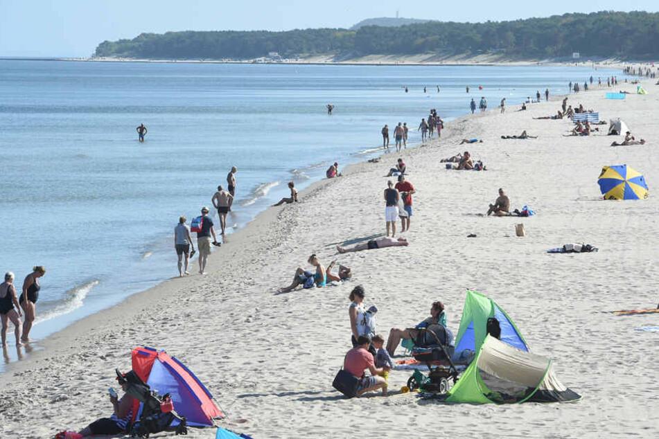 Strände, wie der auf der Insel Usedom, könnten 2019 des Öfteren wegen Robbennachwuchs gesperrt werden. (Symbolbild)