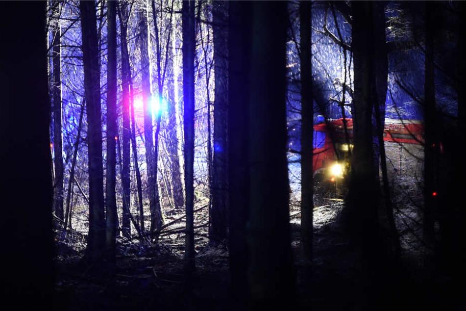 Das Flugzeug stürzte in einem unzugänglichen Waldgebiet ab.