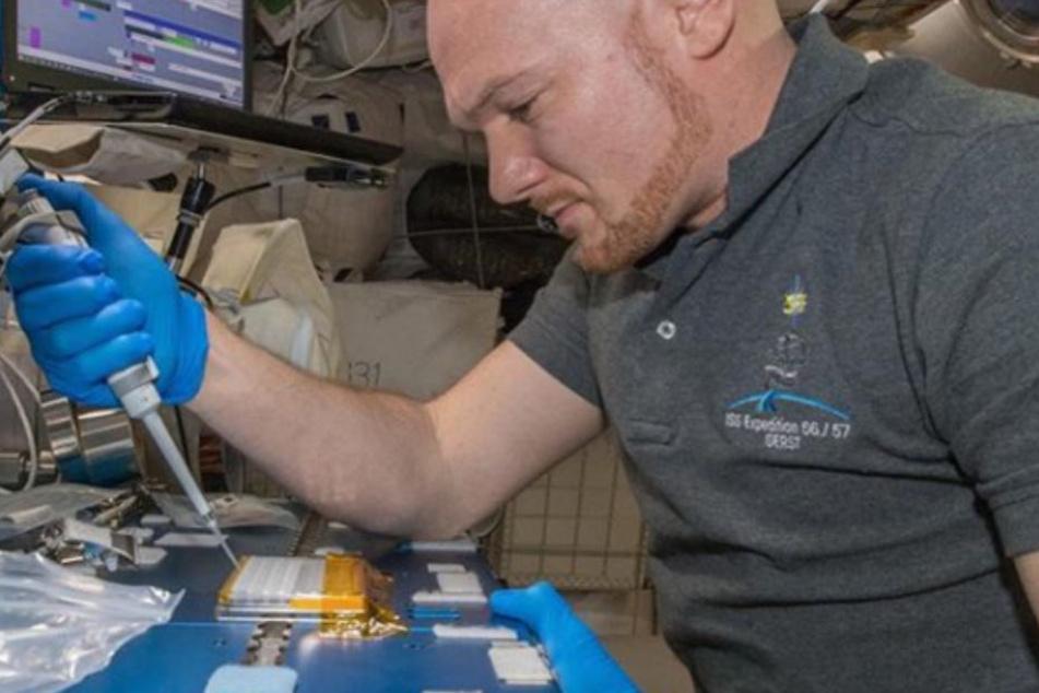 Alexander Gerst (42) züchtet Proteinkristalle für den Kampf gegen die Parkinson-Erkrankung.