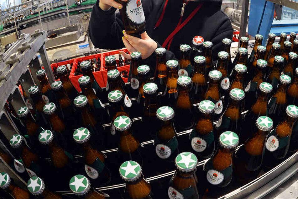 """""""Sterni""""-Fans können bald auf Brauereigelände wohnen"""