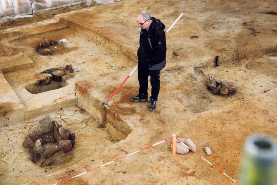 Fein säuberlich sind die einzelnen Fundstellen freigelegt. 3000 Jahre und mehr haben sie auf dem Buckel.