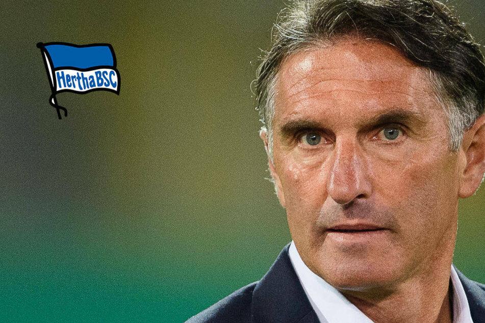Hertha-Trainer Bruno Labbadia erwartet kampfbetontes Spiel gegen Frankfurt