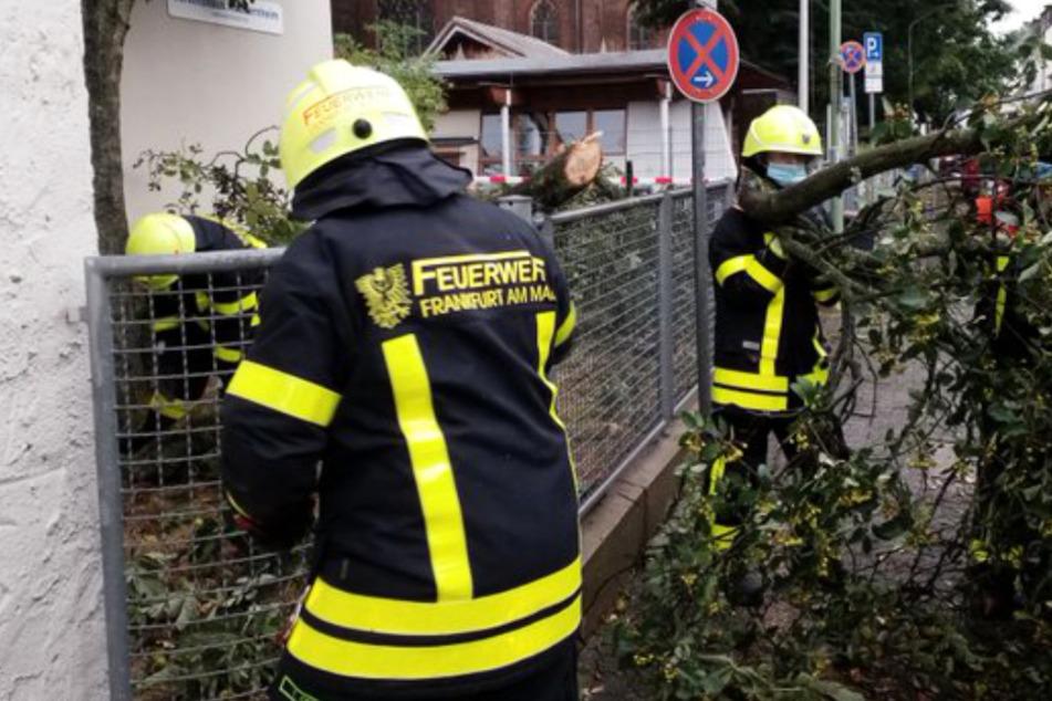 Frankfurt: Unwetter in Frankfurt führt zu Hunderten von Einsätzen der Feuerwehr