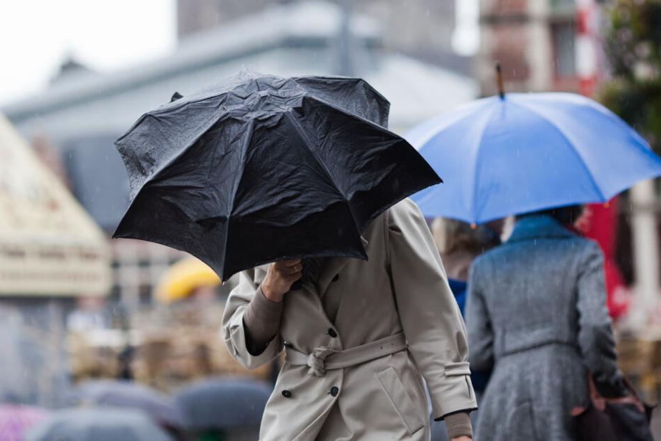 Feuchte Luft und leicht steigende Temperaturen sorgen für ungemütliches Wetter in NRW. (Symbolbild)