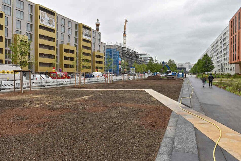 Der Promenadenring in der Innenstadt wächst. Allerdings fallen bei weiteren Bauabschnitten auch Parkplätze weg.