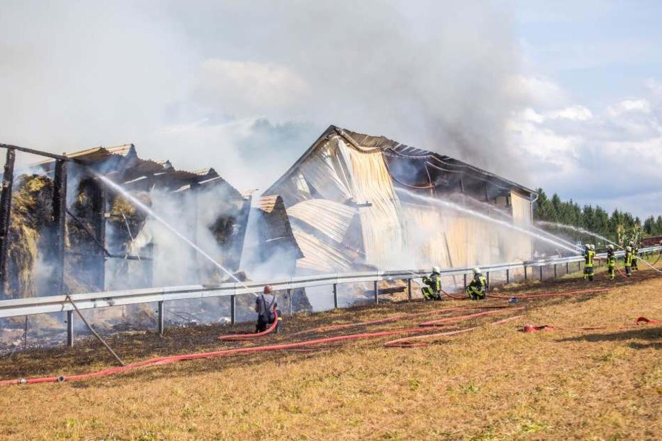 Eine Scheune und ein benachbarter Stall brannten nieder.
