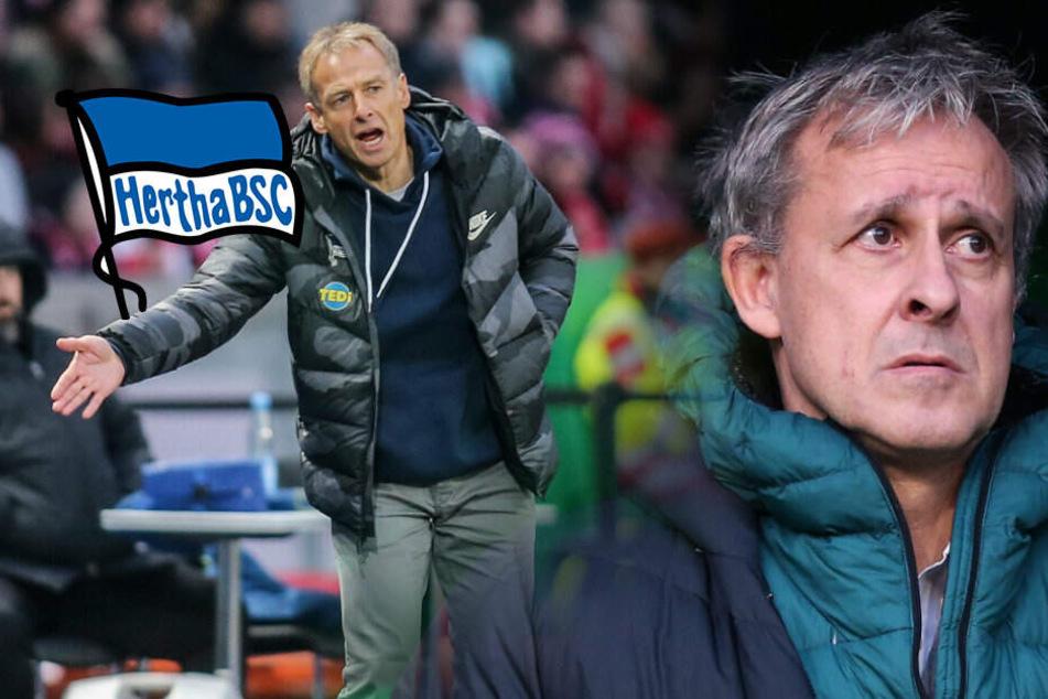 Hertha BSC als Big-City-Club? Littbarski vergleicht Alte Dame mit Rockgruppe