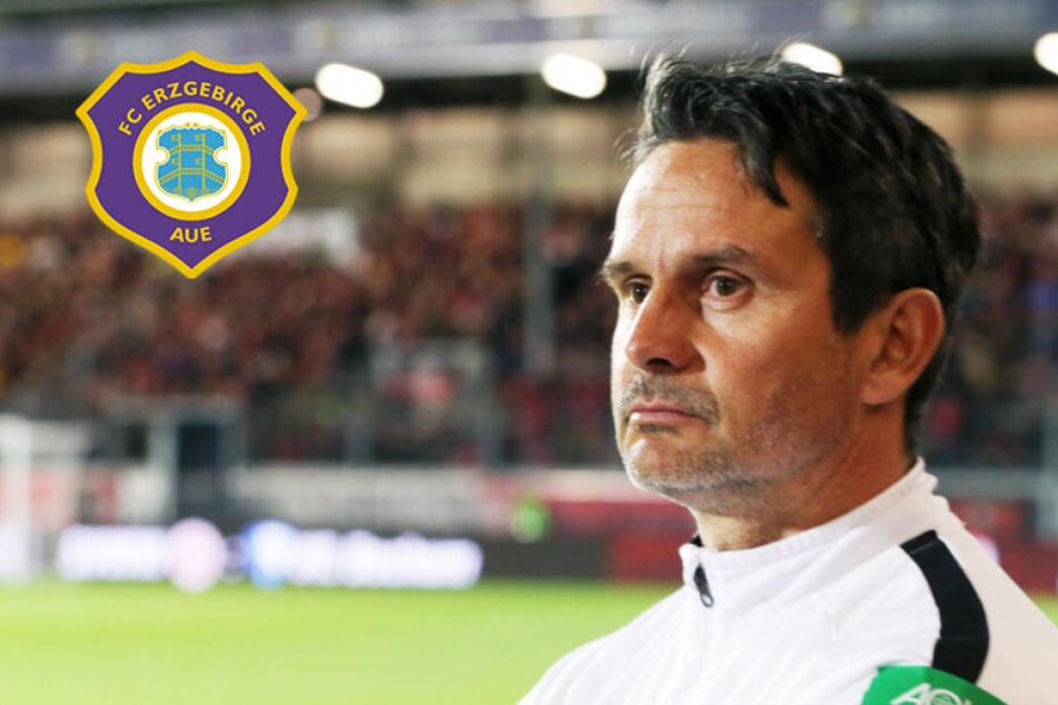 """Aue-Coach Schuster: """"Mit Zweitliga-Fußball hatte das wenig zu tun!"""""""