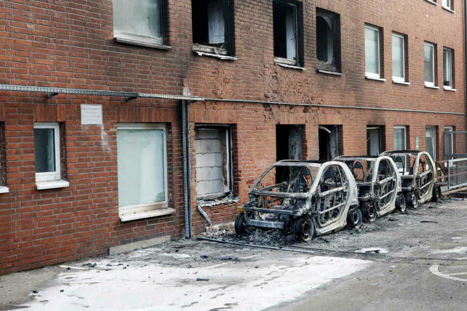 Im Gebäude neben den abgebrannten Autos fanden die Ermittler die Drogenplantage