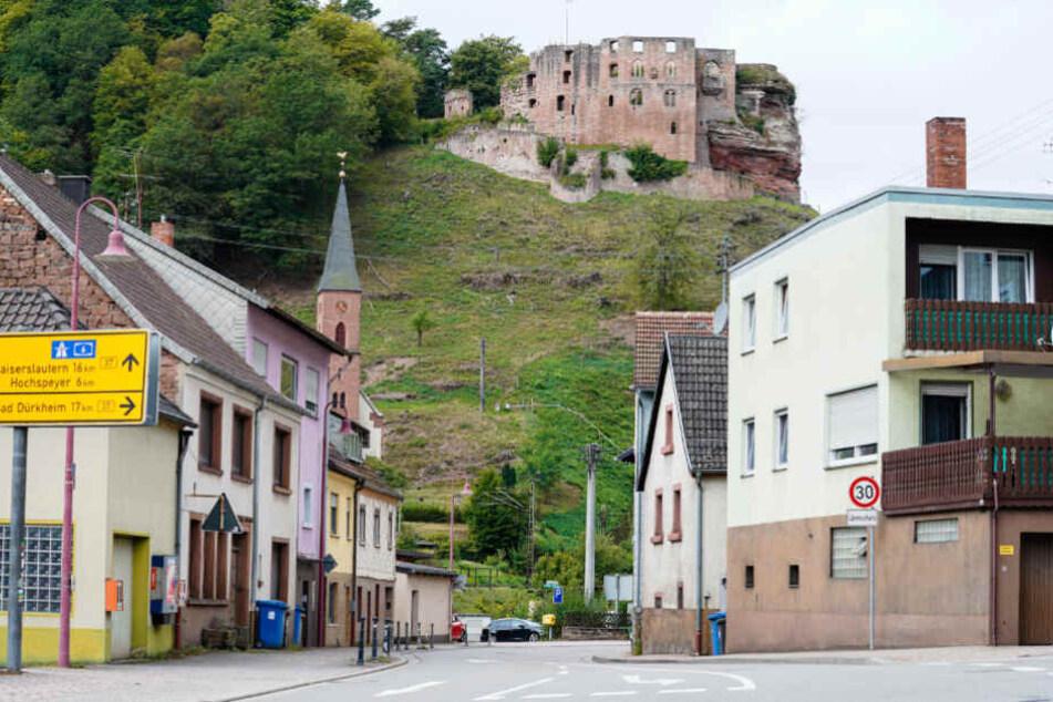 Häuser stehen in der pfälzischen Kommune Frankenstein vor der Burgruine Frankenstein.