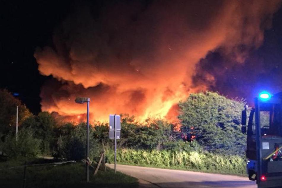 Die Brandursache für das Feuer ist weiterhin unklar.