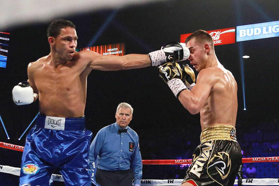 Boxer Nach Kampf