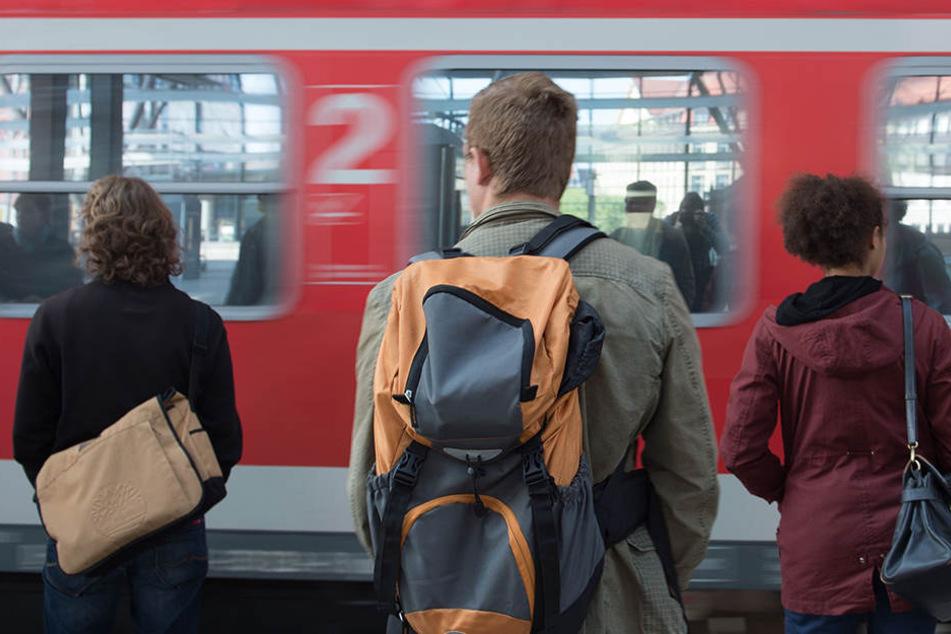 In Löhne kappte ein Ast die Oberleitung der Bahn. (Symbolbild)
