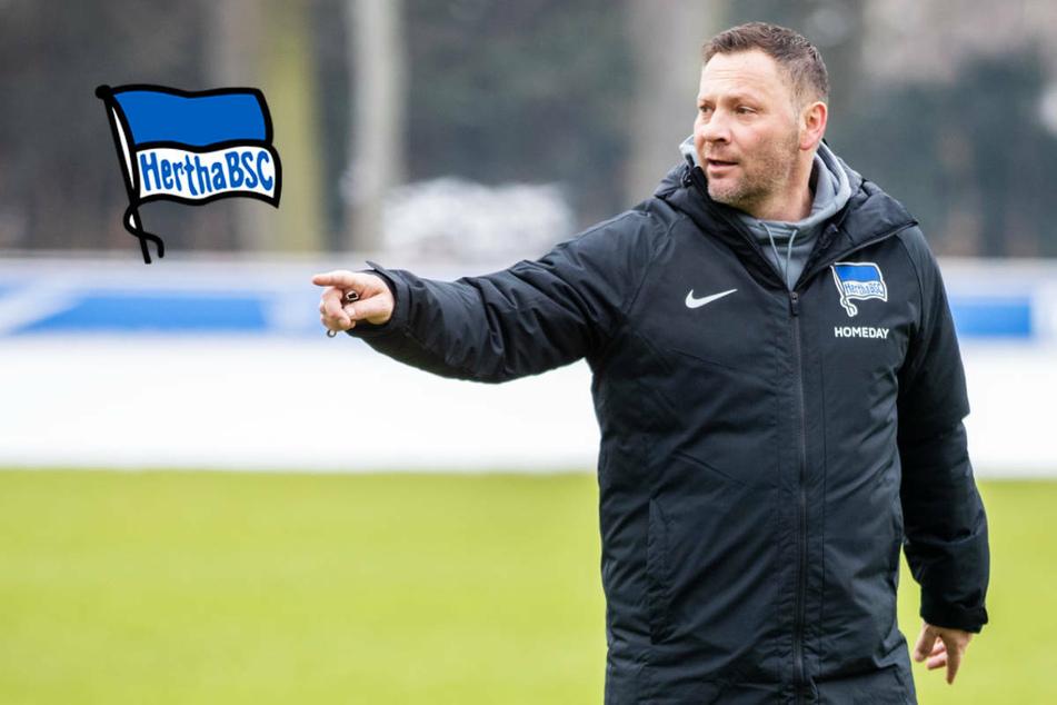 """Hertha BSC vor """"Muss-Spiel"""" gegen FC Augsburg, doch von Druck keine Spur?"""