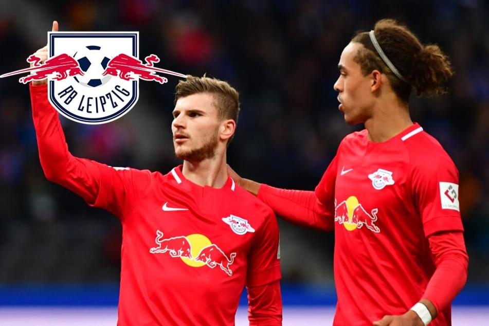 """RB Leipzigs Werner und Poulsen vor Tottenham: """"Sind heiß aufs Spiel!"""""""