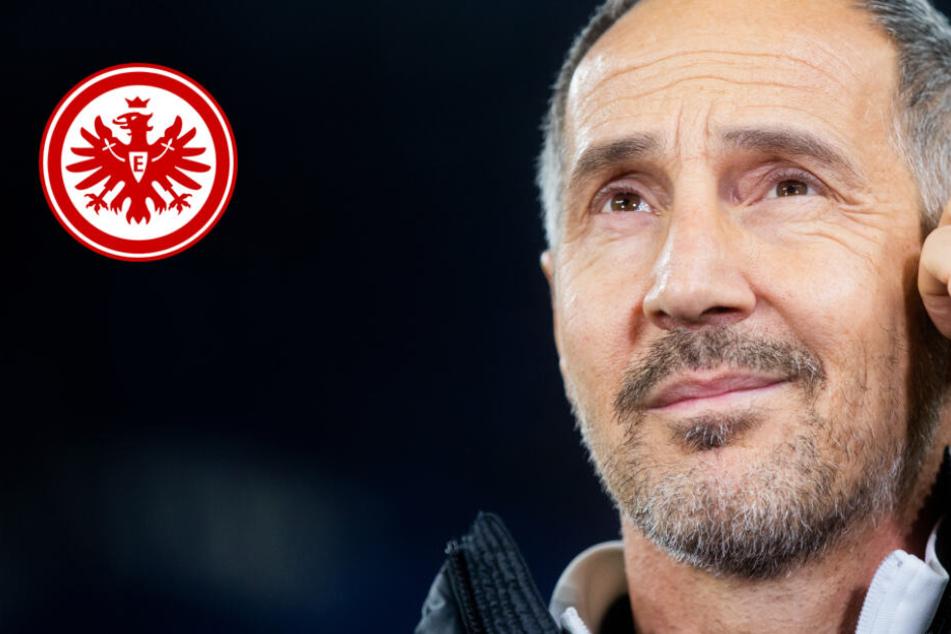 Europa League: Eintracht-Trainer ist optimistisch vor Spiel gegen RB Salzburg