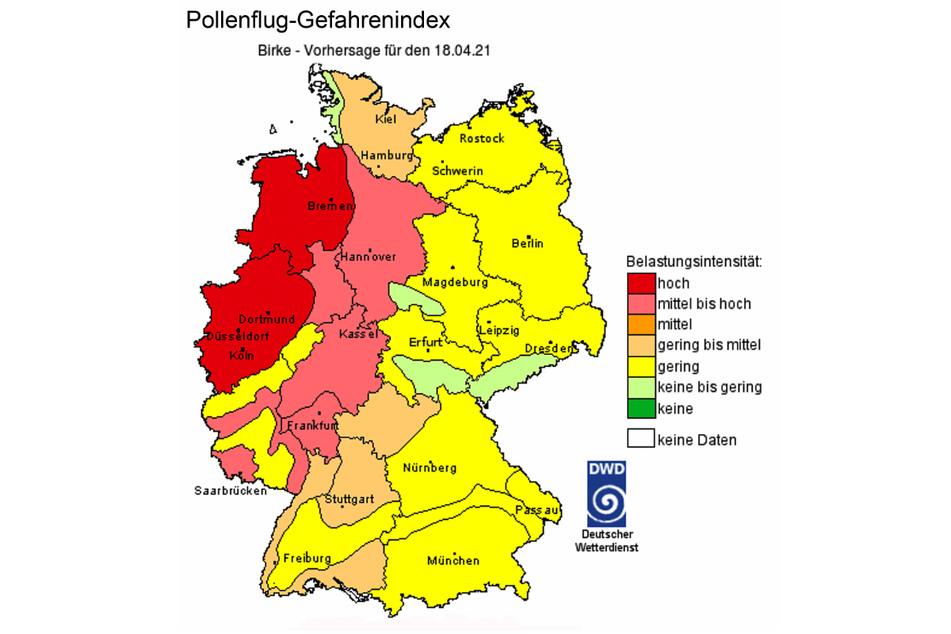 Die Pollenflug-Vorhersage des Deutschen Wetterdienstes weist Chemnitz als von Birkenpollen nahezu freies Gebiet aus.