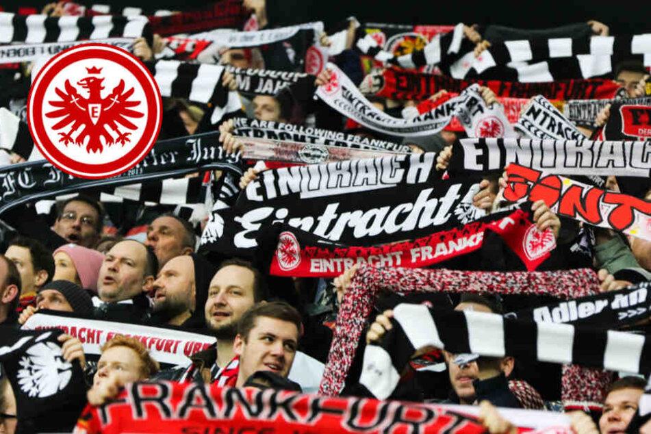 Bundesliga-Start: Eintracht gegen Hoffenheim, danach kommt Hammer-Gegner für Frankfurt