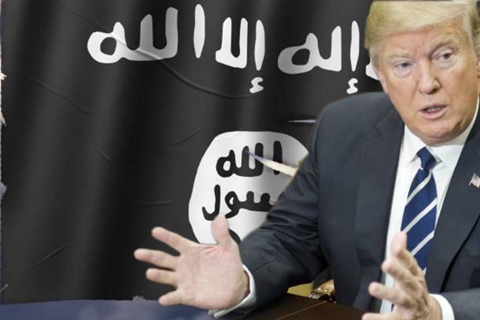 Darum freuen sich Terroristen über Trumps Einreisestopp