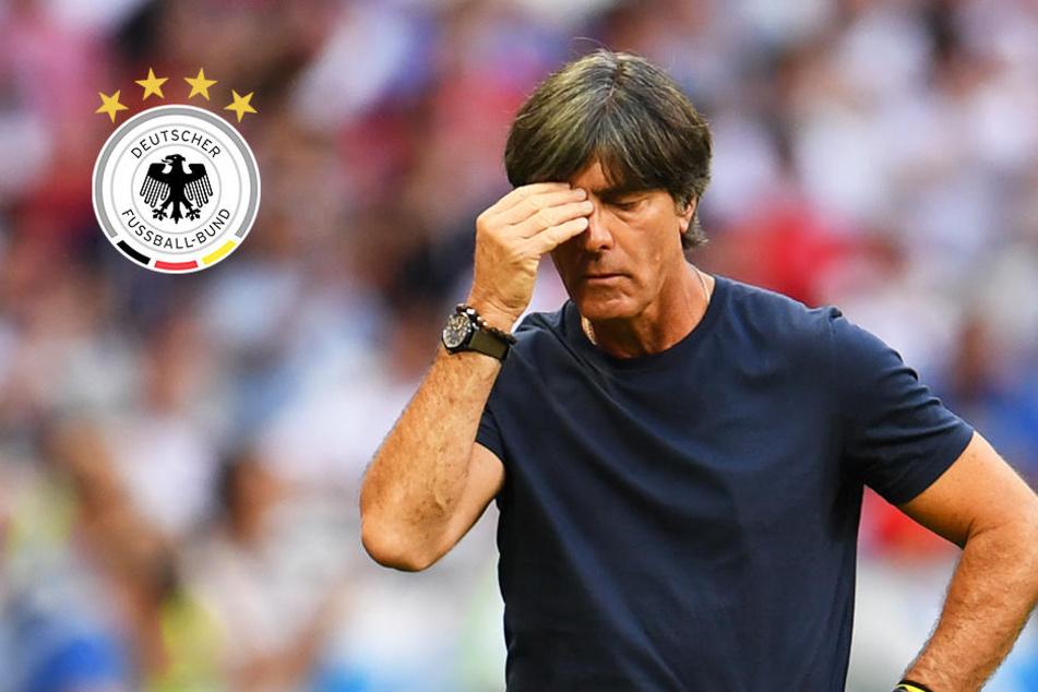 Löw raus! Mehrzahl der Bundesliga-Profis wäre für Rücktritt gewesen