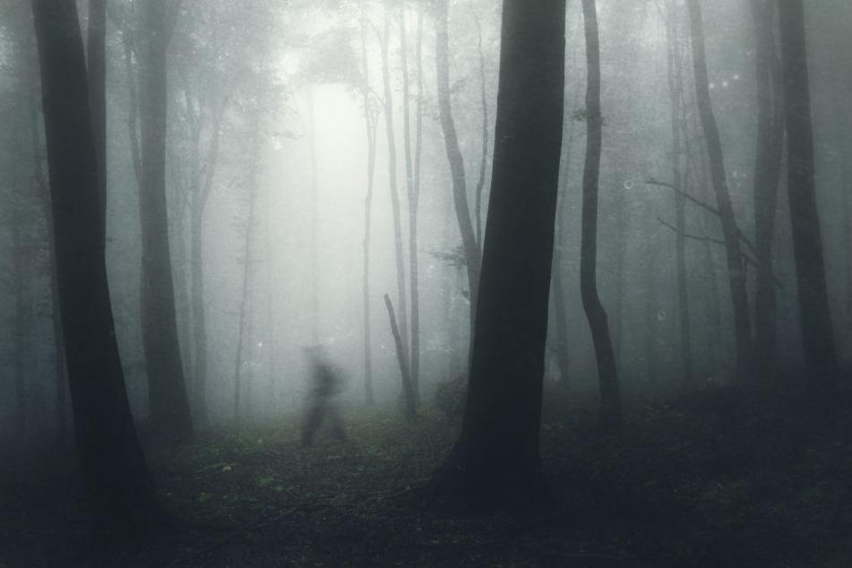 Die Männer verfolgten ihr Opfer nach dessen Flucht und vergingen sich ein zweites Mal an ihr.