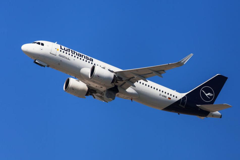 Frankfurt: Lufthansa-Pilot fliegt Penis in die Luft