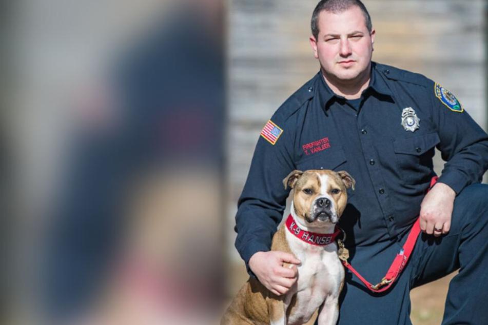 Dieser Hund sollte fürs Töten trainiert werden: Doch dann kam alles ganz anders
