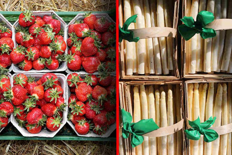 Beides besonders begehrt: Während Erdbeeren dieses Jahr Luxus sind, konnte der Spargel hin und wieder als Schnäppchen am Stand oder im Supermarkt punkten. (Bildmontage)
