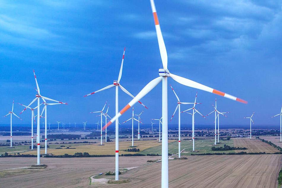 2018 wurden in Baden-Württemberg nur 35 neue Windenergieanlagen gebaut.
