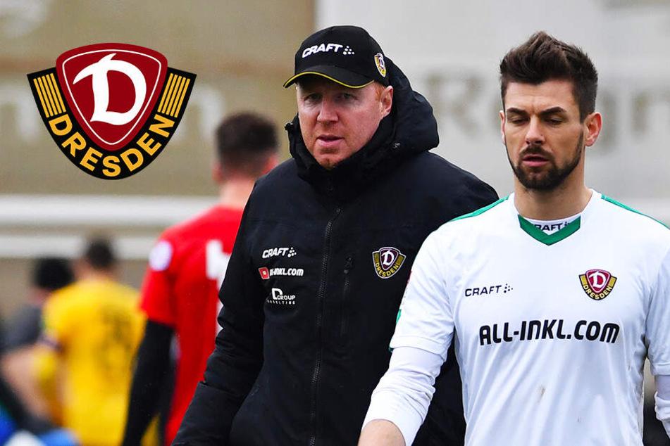Dynamo Dresden: Darum blieb Wiegers trotz Reservistenrolle immer dabei