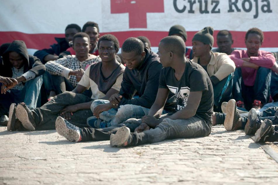 Trauriger Rekord: Nie waren so viele Menschen zur Flucht gezwungen