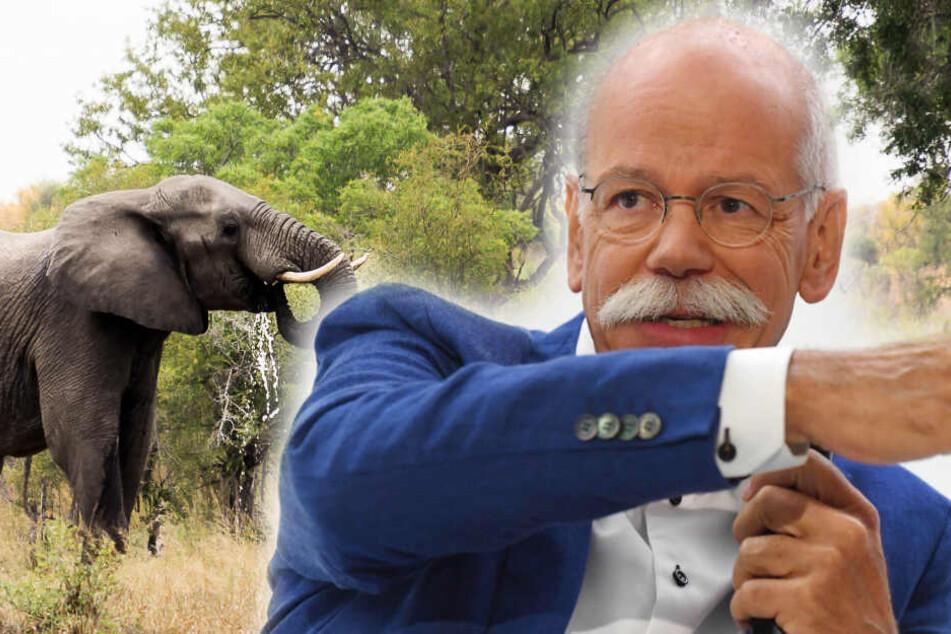 Darum engagiert sich Ex-Daimler-Chef Dieter Zetsche jetzt in Afrika