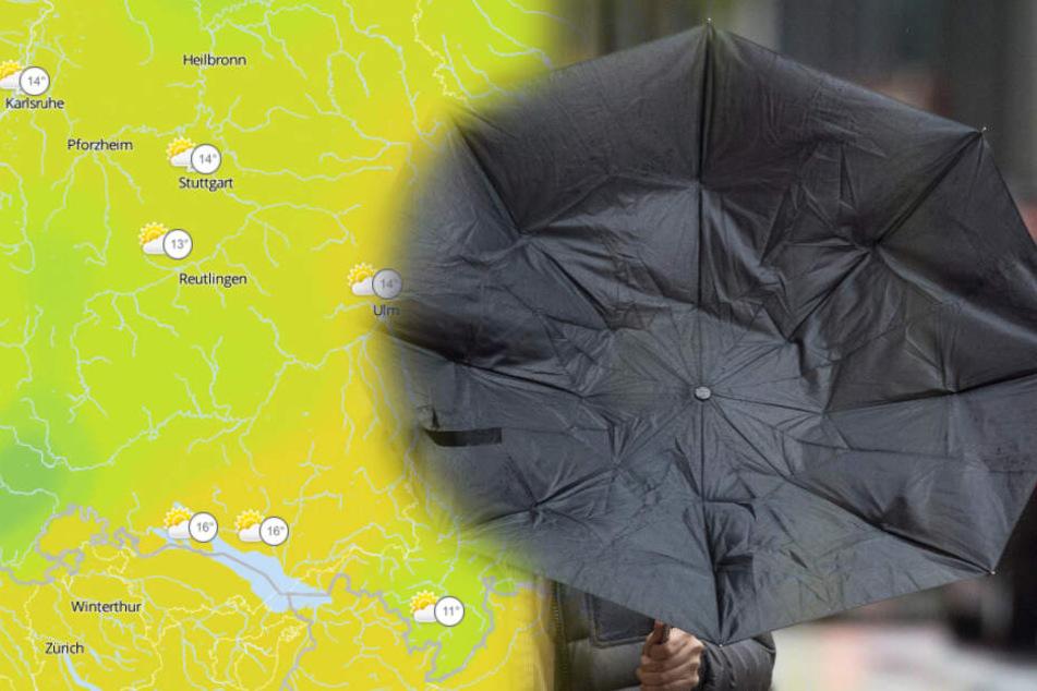 Im Schwarzwald könnte es am Samstag stark regnen.