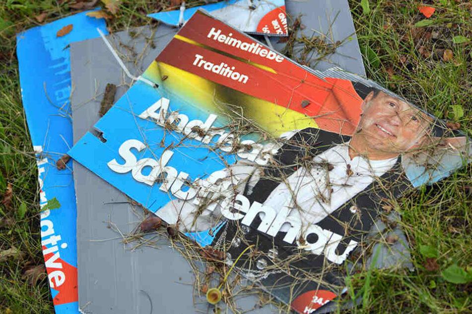 Erst im September wurden noch Wahlplakate der AfD in Lebus zerstört.