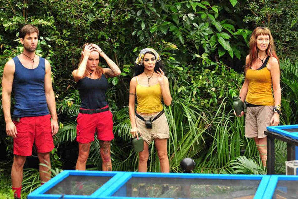 Am dritten Tag mussten gleich jeweils zwei Personen pro Team zur Dschungelprüfung antreten.