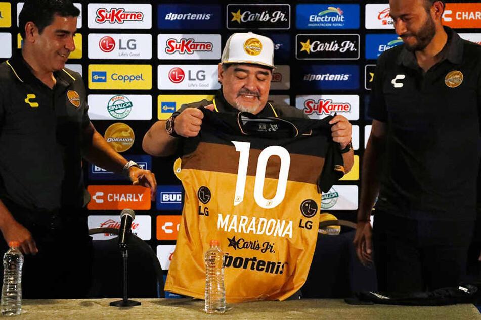 Wurde auf einer Pressekonferenz vor 120 Journalisten aus aller Welt als neuer Trainer vorgestellt: Diego Armando Maradona (Mitte).