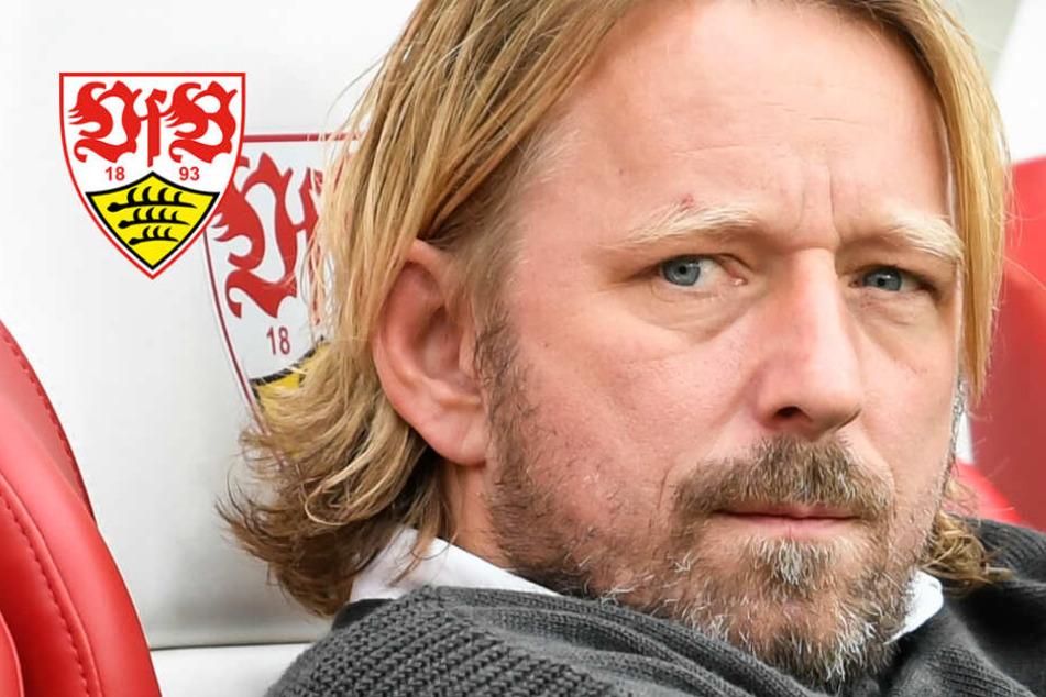 VfB-Sportchef Sven Mislintat verurteilt Hetze gegen Dietmar Hopp scharf
