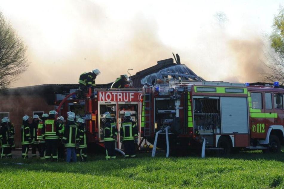 Zahlreiche Einsatzkräfte kämpften gegen das Feuer.