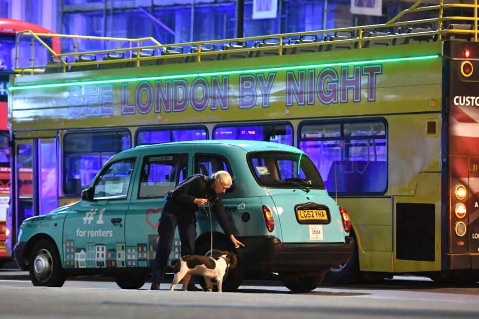 Mit Spürhunden gehen die Beamten in England nach dem Anschlag Spuren nach.