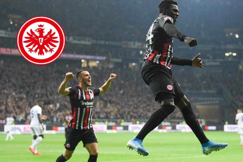 Eintracht fightet sich durch 3:0 wieder nach Europa
