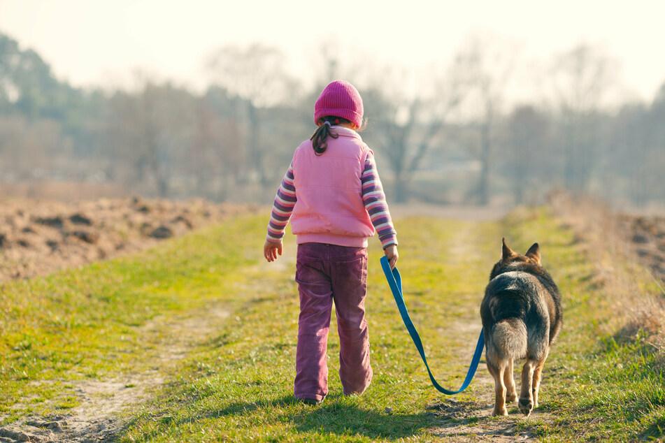 Daniel konnte sich weder an seine Tochter, noch an die Hunde der Familie erinnern. (Symbolbild)