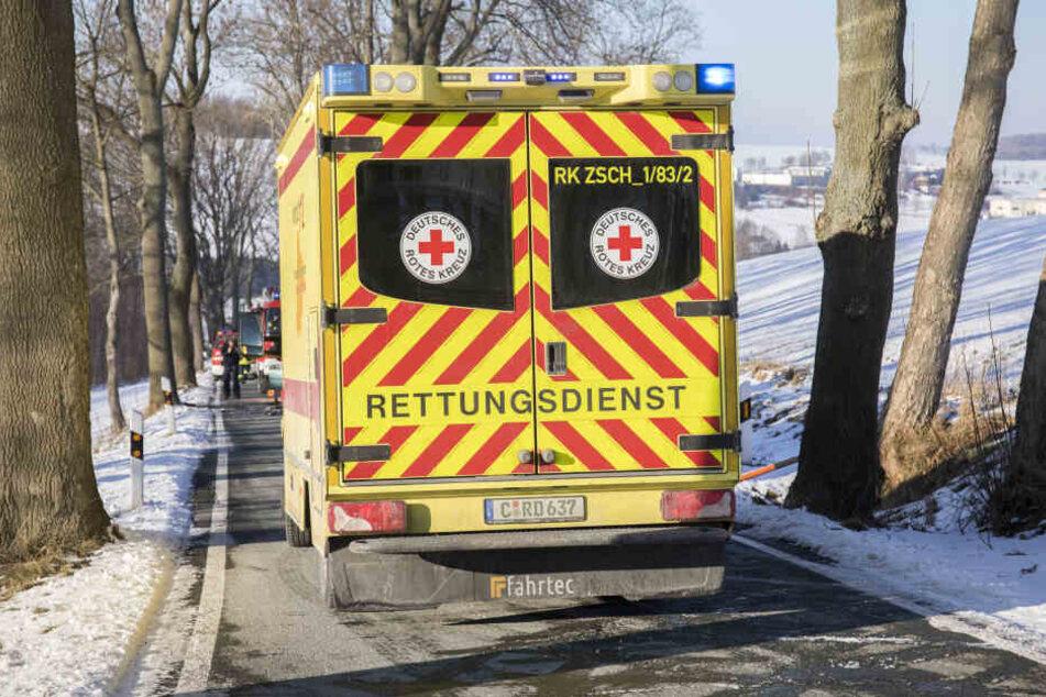 Der verletzte Fahrer kam ins Krankenhaus.
