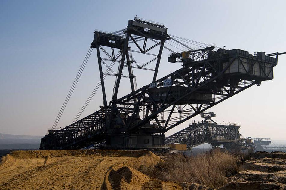 Der Kohleausstieg - und damit die Energiepolitik - ist ein heißes Thema.