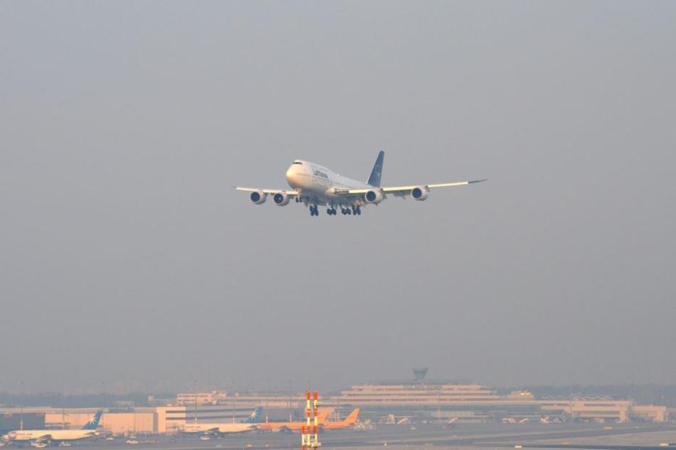 Die Boeing 747 der Lufthansa im neuen Gewand beim Überflug am Flughafen Köln-Bonn.