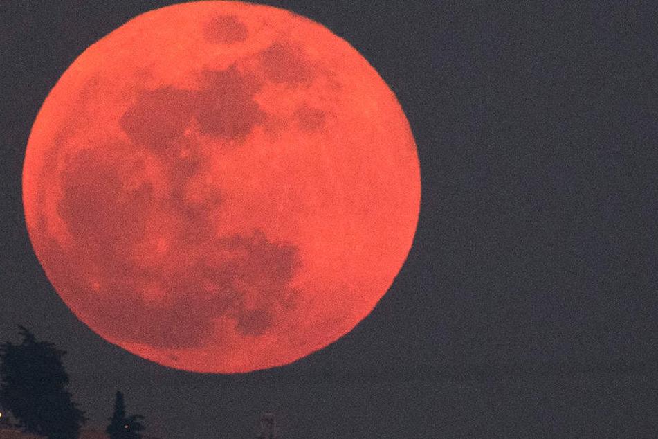 Der Blutmond im Juli steht bevor. Am 27. wird's rot am Himmel, denn diese totale Mondfinsternis am gehört zu den großen astronomischen Ereignissen unserer Zeit.